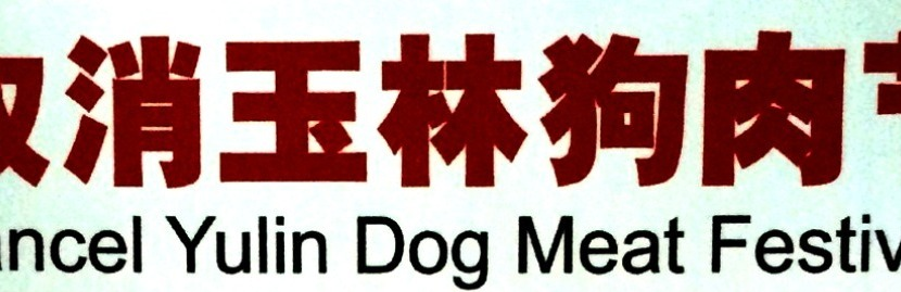 China – Under The Hood: A Dog's Life in China – To Stroke or to Stir Fry?