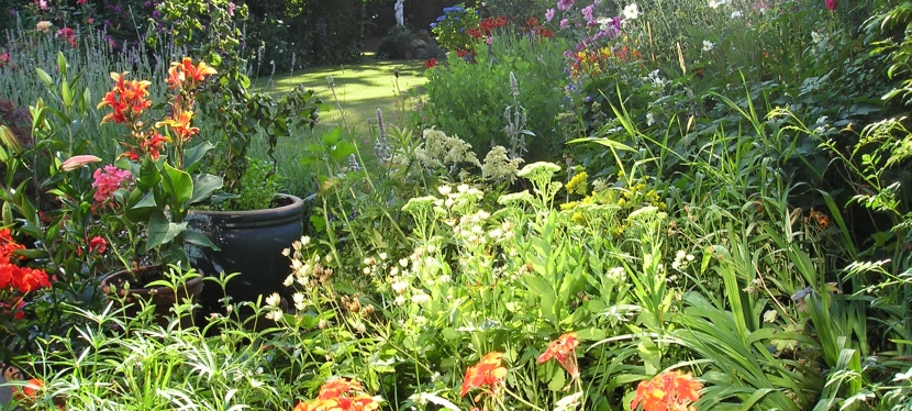 Summer Garden Splendour In Ireland – Restoring The Five Senses