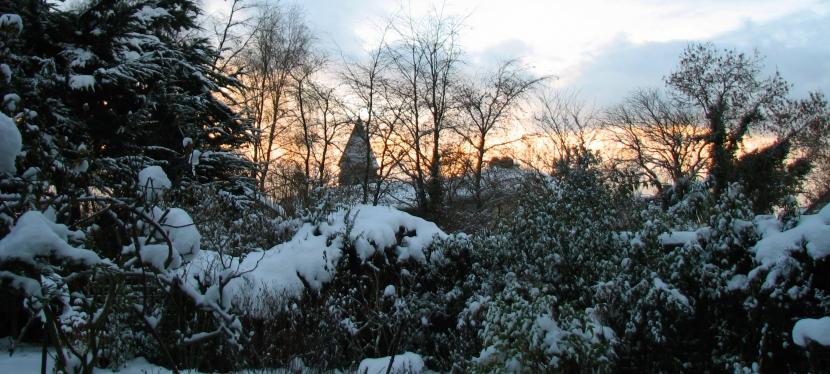 Irish Winter Scenes