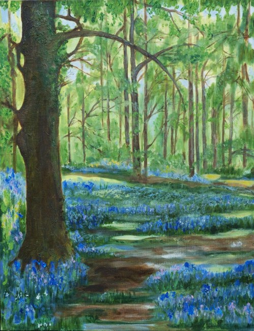 Bluebell Wood by Kathryn O'Reilly