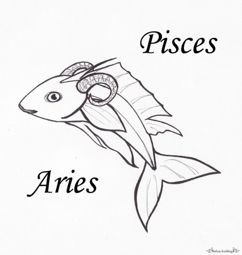 Born on the cusp - Pisces Aries - When both the day and night are of equal length 004 - March 20th
